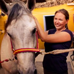 Vet specialized in chiropractic, physiotherapy, and equine rehabilitation